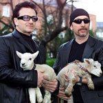 U2'S BONO AND EDGE HOLD SHEEP AT DUBLIN'S ST.STEPHEN'S